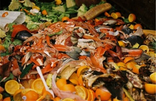Defra food waste initiatives bear fruit