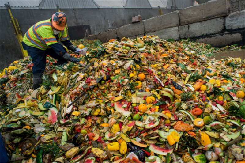 Free food waste collection for every household in England